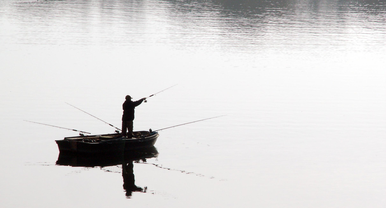 釣魚網站暴增85%!