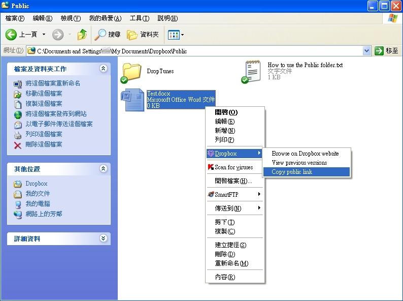 Dropbox Web domain