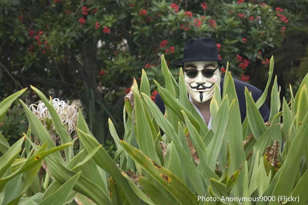 Anonymous9000