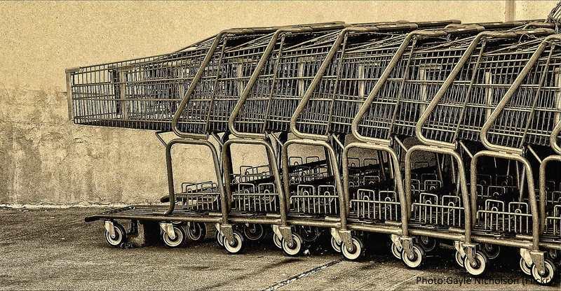 shopping cart_Gayle Nicholson